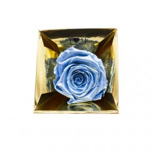 Rosa Stabilizzata Azzurro...