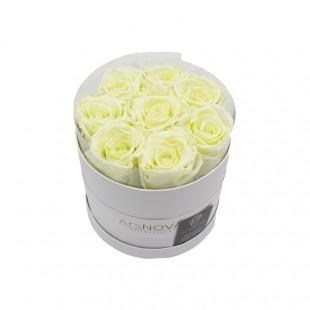 Box da 8 Rose Verdi...