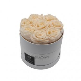 Box da 8 Rose Rosa Pastello...