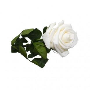 Rosa Bianca Stabilizzata...