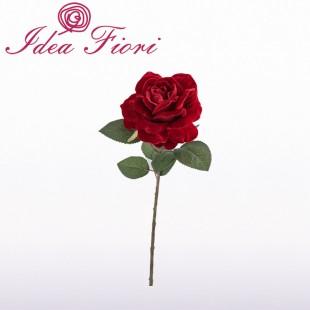 Rosa In Velluto Rossa...