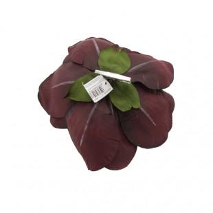 Clip Magnolia Bordeaux Enzo...