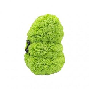 Teddy Rose in Foam Verde