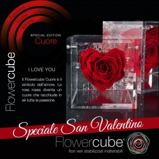 Special Edition Cuore di...