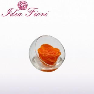 Rosa Stabilizzata Arancio...