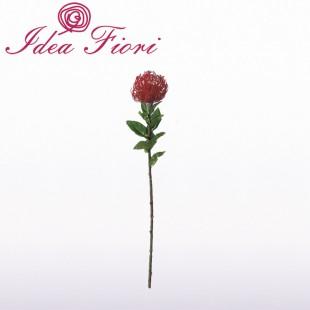 Protea Rossa Artificiale Bruco