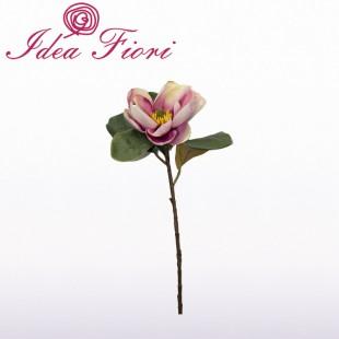 Magnolia Rosa Real Tuch...