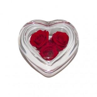 Cuore di Rosa Rossa Flowercube