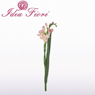 Fresie Rosa Artificiale