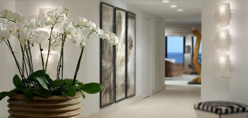 Le migliori Orchidee che non muoiono mai – idea fiori