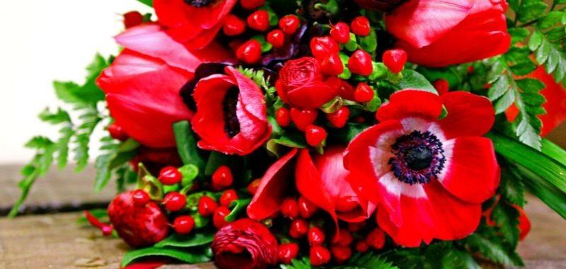 Tantissimi fiori per laurea – Idea Fiori